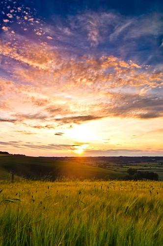 blue sunset summer sun colour clouds wheat dorset goldenhour