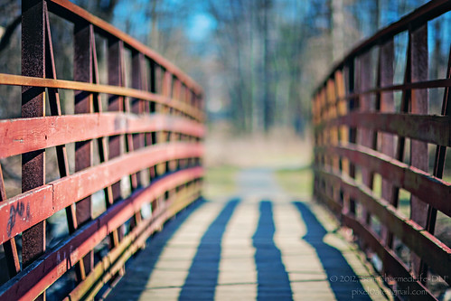 bridge creek tsn sliderssunday