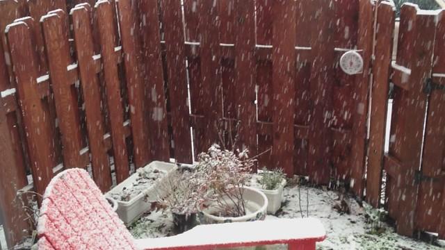 Snow?! In Portland?!