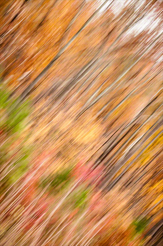 autumn usa abstract sc clover jurors 2011 kingsmountainnationalmilitarypark admintalkinternational southeasternusaroadtrip