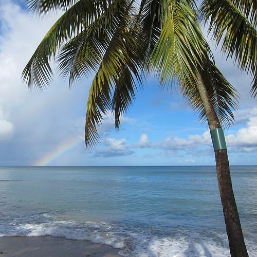 ocean sea sky tree beach water relax rainbow sand view peaceful carribean palm stlucia seaview johndalkin heavensgatejohn eastwindsinn