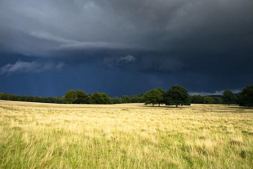 Storm Brewing over Petworth Park | by sagesolar