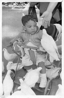 Meeting The Doves, October 1957
