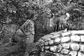 Svensk sommar 1978 - 21