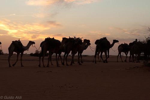 africa digital landscape desert chad saharadesert centralafrica ennedi nikond300s murdidepression tch5933