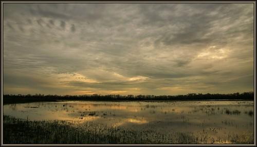 park sunset reflection water clouds pond texas houston highlights marsh flickrdiamond wanam3 elfrancoleepark