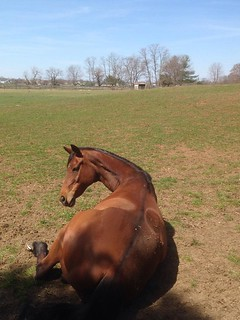 """""""Does this angle make my bum look big?"""" 
