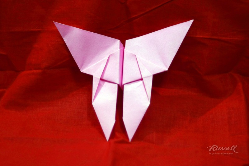 Origami Butterfly 2