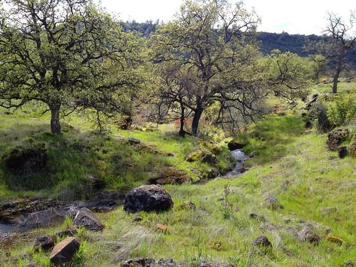 california hiking buttecounty