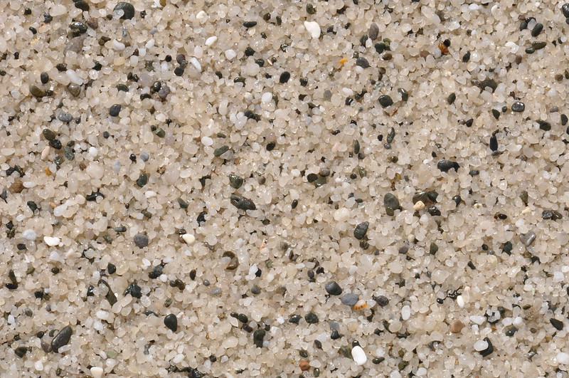 Coarse sand at Bird Rock