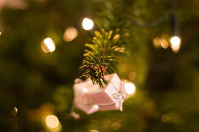 merry christmas [explored]