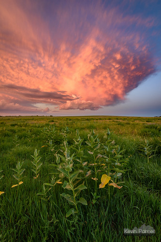 storm stormy thunderstorm june summer sky weather clouds nikond750 tokina1628mmf28 blue norfolk nebraska greatplains evening dusk sunset colorful orange pink prairie wildflowers milkweed dying lpsupercell base green grass