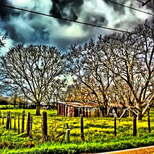 sky apple clouds barn fence square mac rusty squareformat sherry wildflowers normal 2012 4g fencepost iphone sideoftheroad iphoneography instagramapp uploaded:by=instagram goodthursday~~~ foursquare:venue=4de95b1a45dde4a28d67fb07 ithinkspringishereyay