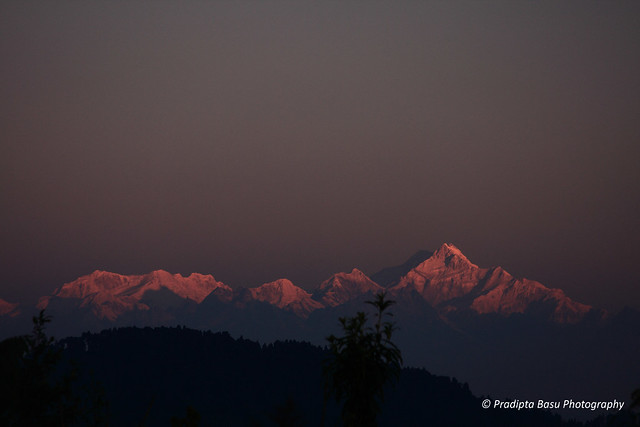 Kanchenzonga from Rikisum Top