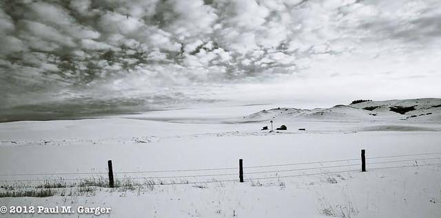 Minimalist View Black Hills Winter
