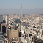 From Tokyo Tower 東京タワーから