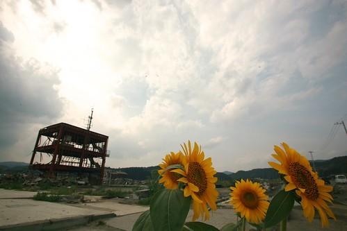 2011年8月16日 南三陸町志津川 防災庁舎前 | by shiggyyoshida