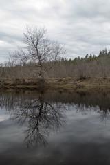 Musquodoboit River Canoeing