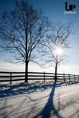 road sky snow tree sunrise country