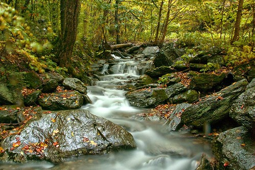 autumn trees mountain water leaves rocks colorful stream vermont newengland brook vt mtmansfield mountainbrook greenmountains smugglersnotch