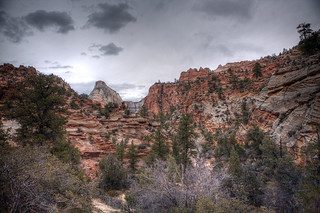 Zion National Park - Morning   by epiøne