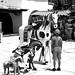 The boy and the Horse por Gilberto Ortega
