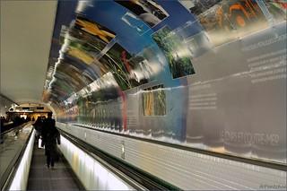 Free Paris Tube