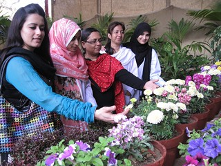 PHOTO BY SYED IRFAN ZUBERI reg flowers exhibition in  karachi zoo  ---- (35)