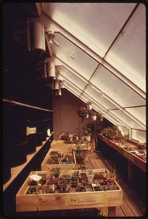 A highly efficient solar greenhouse at a school in Albuquerque, New Mexico. Black barrels contain water and are heated during the day..., 04/1974