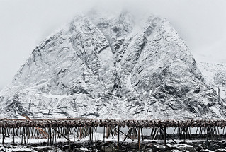 Essence of Lofoten: Olstind + fish | by Mike.D.Green