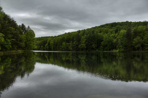 lake happytoproad tree cloud water reflection cumberlandcounty tennessee tn uppercumberland