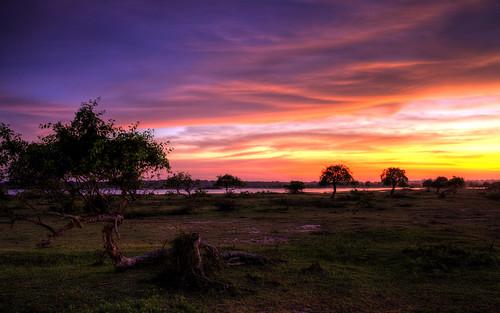 sunset lake srilanka yala yalanationalpark