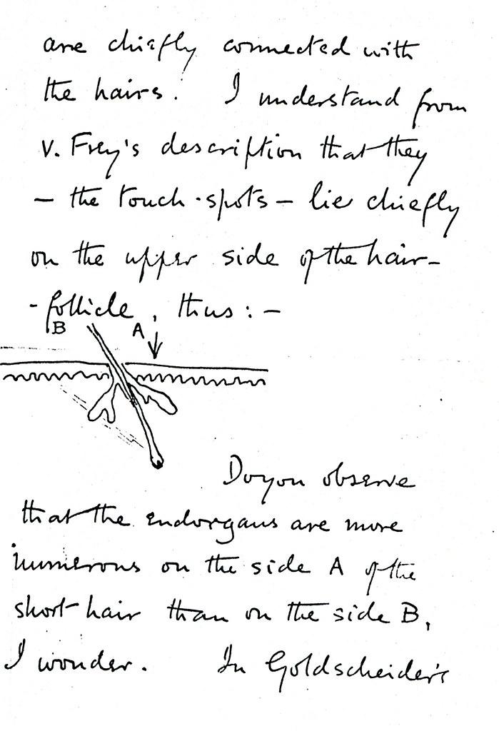 Sherrington to Ruffini - 9 January 1898 (WCG 48.5) 3/4