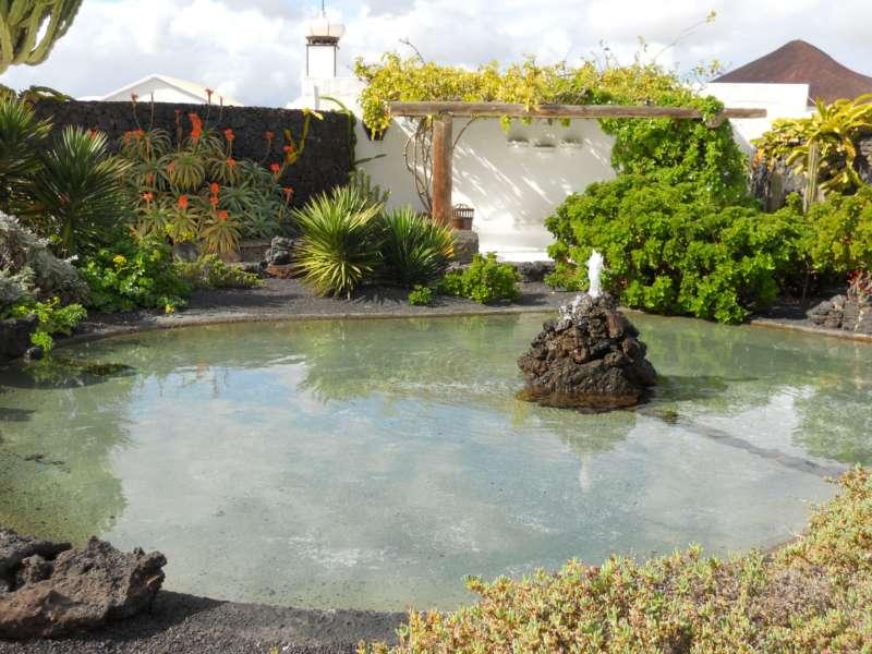 Estanque jardines Fundacion Cesar Manrique 2