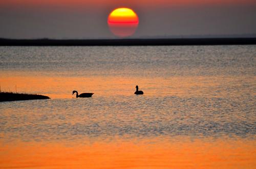 ocean sunset sea newyork beach longisland fireisland blinkagain dblringexcellence tplringexcellence nikond5100 eltringexcellence