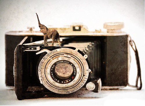 Vintage camera | by thethreesisters
