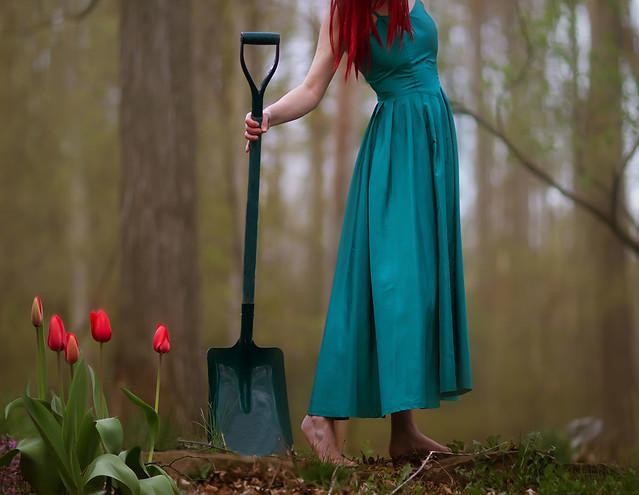 Still life with shovel