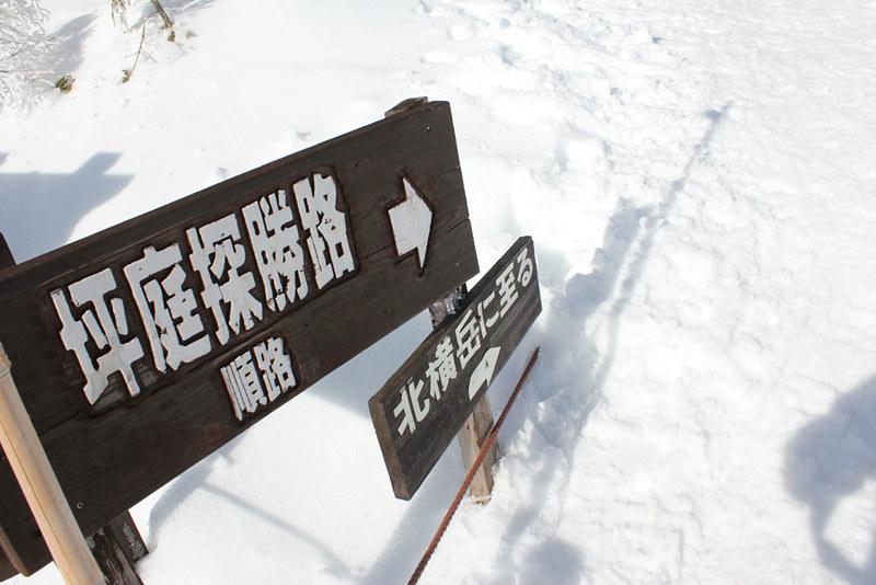 八ヶ岳_24
