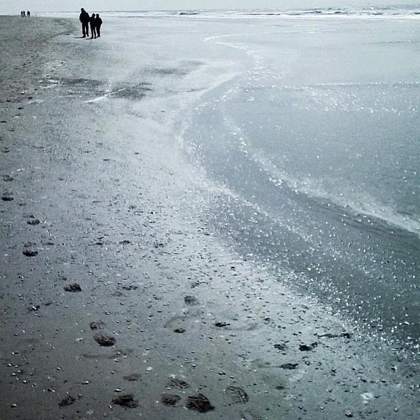 Strand 1 #esprifotografeert #bergenaanzee