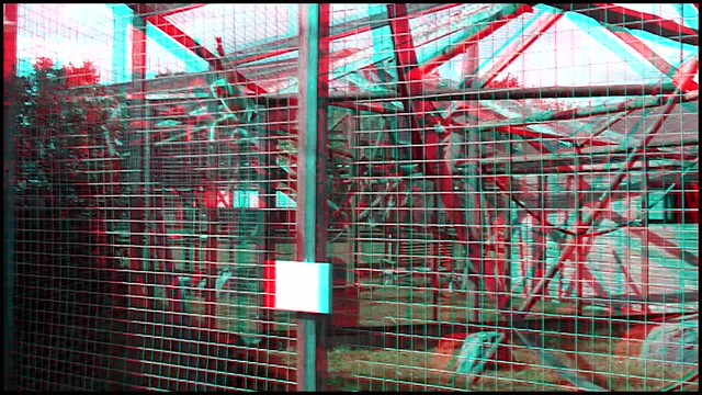 Lar Gibbon - 3d movie clip - anaglyph