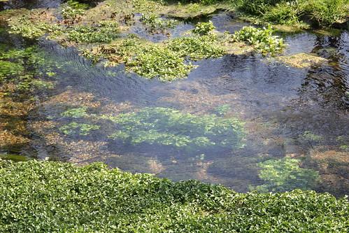 creek pennsylvania berkscounty lakeontelaunee