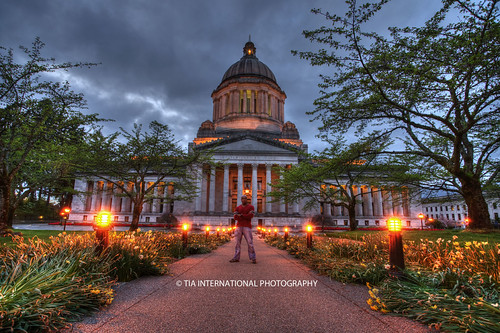 county flowers trees light plants building history lamp architecture tia garden emblem campus evening washington state pacific northwest symbol path capital pillar landmark foliage lamppost capitol walkway dome sound olympia government law column thurston rotunda administration grounds pathway legal puget tosin legislative arasi tiascapes ©tiainternationalphotography