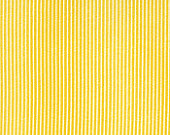 Punctuation Tutor Stripe in Yellow Punctuation by American Jane | by shimmyblisster