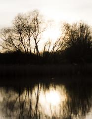 Sunset at Fort Rammekens