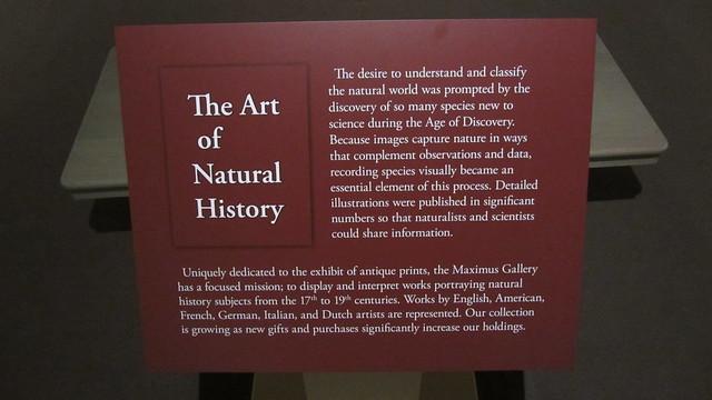 IMG_1152 The Art of Natural History