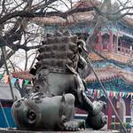 CHINA-2011_0534