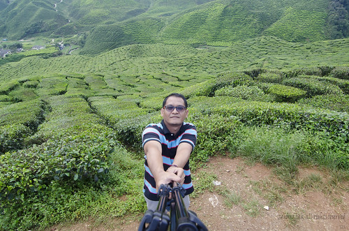 tea outdoor hill plantation selfie hihgland zaidirazak
