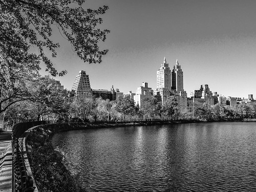 Central Park, Manhattan | by nianci pan
