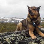 Norjan maisemissa hetken verran