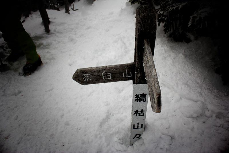 八ヶ岳_73